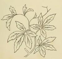 рисунок для оцифровки однотонной вышивки
