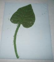 вышитая на ткани открытка к 8-у марта шаг 14