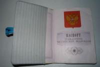 машинная вышивка обложки на паспорт шаг 18